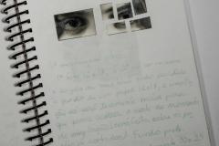Estudo nº 4