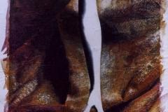 Sacrifícios pela Beleza. Pintura sobre fotografia. 2003.